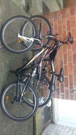 2 push bikes for sale