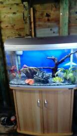 AQUA ONE AR 850 FISHTANK SILVER FISHTANK WITH BEECHWOOD STAND IN EXCELLENT CONDITION