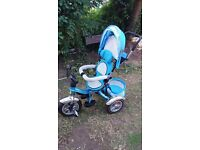 Tricycle bike buggy