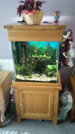 fish Tank and stand cupboard