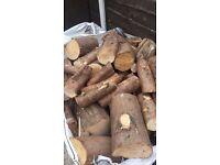 Fir tree with large pieces of Rowan tree logs (Unseasoned)