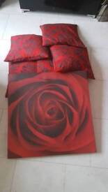 5 cushions & 1 large pic