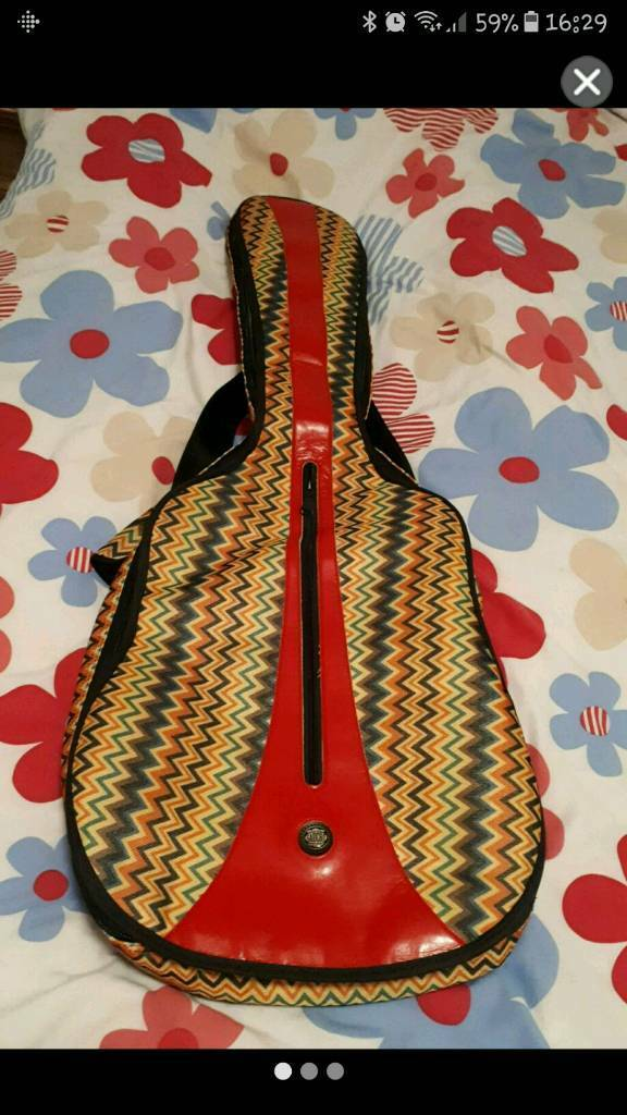 Padded guitar case (never used. Ideal gift)