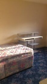FURNISHED DOUBLE ROOM FOR PROFESSIONAL NON-SMOKER AVAILABLE IN WILLEN £430- £500 per month