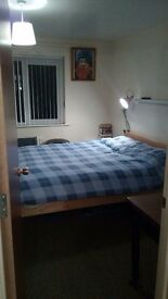 Spacious Double Room in a great house on Annadale Avenue, Belfast.