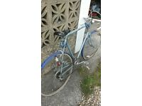 Puch Free Spirit Gents Bicycle