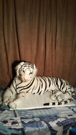 TEDDY TIGER (WHITE BENGAL) LARGE. EXCELLENT CONDITION.
