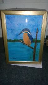just painted picture of kingfisher fully framed with glass completed by new lincolnshire artist