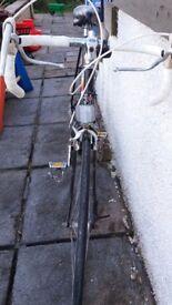 FREE Vintage raleigh bike