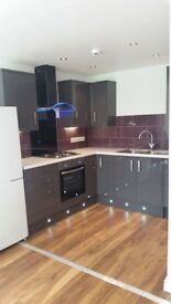 **1 Bedroom Modern Contemporary flat**