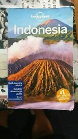 Indonesia Lonely Planet Guide