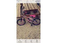 Girls bikes free