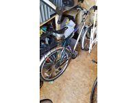 Mens bike barracuda