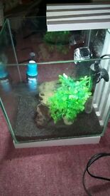 22litre Fish Tank, with accessories