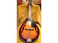 Vintage Hondo Mandolin