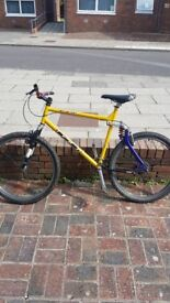 GT Raleigh Mountain Bike (full suspension)