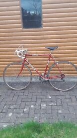 Men's ASTRA road bike