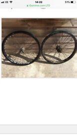 20inch BMX ODYSSEY WHEELS Offers!!!!!