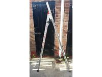 3 Way Extension Ladder's
