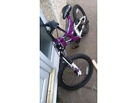 Dunlop Unisex Ds20 Mountain Bike Cycle Bicycle 20″ Alloy Wheels 6 Speed