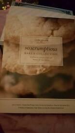 """ PLYMPTON "" LAURA GALLER SO SCRUMPTIOUS"