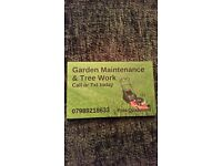 Garden Maintenance and Tree Work