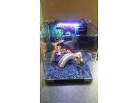 Small fish tank / aquarium 30L