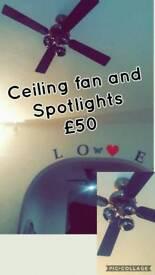 Celing spotlights and fan