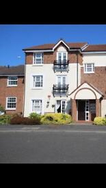 Ground floor flat TO LET Mid May