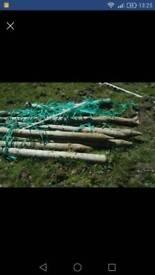 Fencing posts tanalised