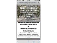 Prunus tree care and landscapes