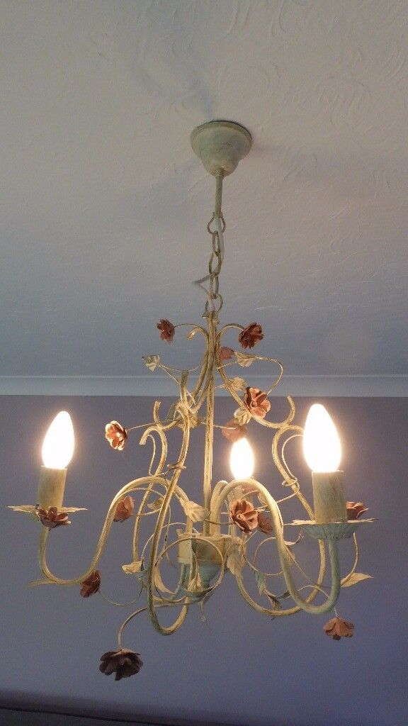 decorative floral lights