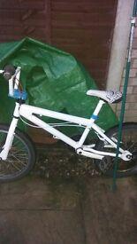 Bmx bike white rides good solid stunt bike