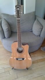Washburn 12 String Acoustic Guitar WD10SC12