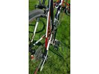 Trek road bike with carbon fork