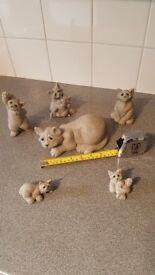 Quarry Critter Cats