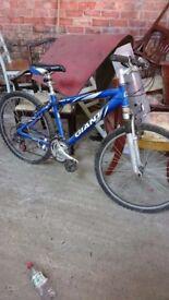 giant mens bike small frame £100 pounds