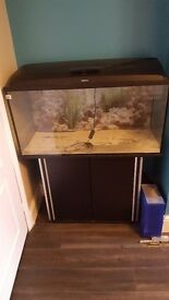 Aquel fish tank with cupboard stand and lights