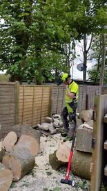 Qualified Tree surgeon and garden clearance .