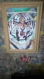 3d tiger poster