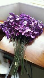 Purple orchids stems and flower heads
