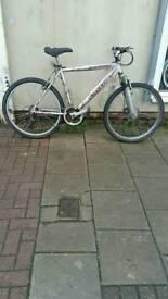 "Silver Falcon Trakatak Mountain Bike, 26"" Wheels, 21 Speed, 21"" Frame"
