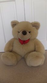 Big Bobby bear teddy - soft and cuddly