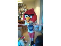 Fancy Dress Angry Birds Head