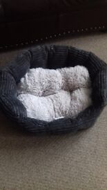 Small dog items. £1- £10.
