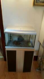 Aquarium on a stand with accessories