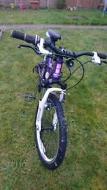 """20"""" bike, front suspension, alloy frame, for girl, boy, child"""