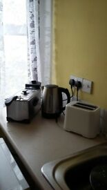 Semiprofessional stainless fryer,Toaster,Stainless Steel Kettle