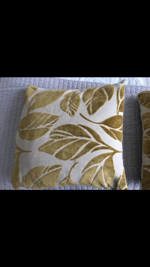 2x next cushions