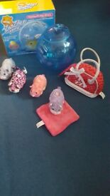 Zhu zhu pets and lots of accessories